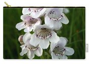 Showy Beardtongue Flower Carry-all Pouch
