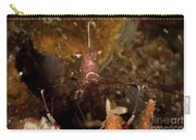 Shrimp With Legs And Claws Spread Wide Carry-all Pouch