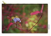 Siberian Dogwood Carry-all Pouch