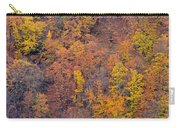 Sierra Nevada National Park Carry-all Pouch