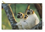 Sifaka Propithecus Sp Family Resting Carry-all Pouch