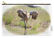 Silly Sandhill Crane Chick Carry-all Pouch