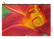 Single Red Lily Closeup Carry-all Pouch
