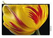 Single Yellow And Red Tulip Carry-all Pouch