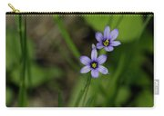 Sisters Of The Purple Plants Carry-all Pouch