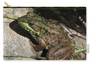 Sitting Pretty Carry-all Pouch
