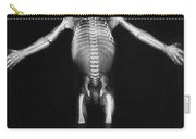 Skeleton Of A Baby Carry-all Pouch