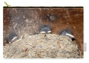 Sleeping Barn Swallows Carry-all Pouch