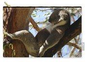 Sleeping Koala Carry-all Pouch by Bob Christopher