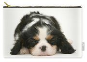 Sleeping Puppy Carry-all Pouch by Jane Burton