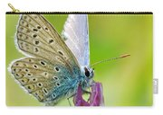 Little Butterfly Carry-all Pouch