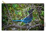Small Blue Jay Of California Carry-all Pouch