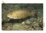 Smallmouth Bass Protecting Eggs Carry-all Pouch