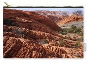 Snow Canyon 2 Carry-all Pouch