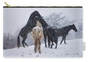 Snow Day I Carry-all Pouch by Betsy Knapp