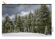 Snowstorm In The Cascades Carry-all Pouch