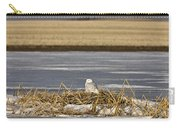 Snowy Owl Perched Frozenpond Carry-all Pouch