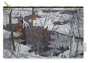 Snowy Pond Carry-all Pouch