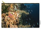 Soft Coral Seascape And Rainbow Carry-all Pouch