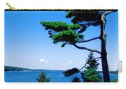 Somes Sound  Carry-all Pouch