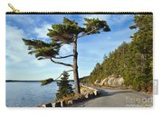 Somes Sound Maine Carry-all Pouch