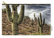 Sonoran Desert II Carry-all Pouch