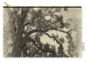 Southern Comfort Sepia Carry-all Pouch by Steve Harrington