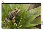 Southern Frog Newly Discovered Species Ecuador Carry-all Pouch