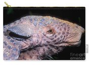 Southern Naked-tail Armadillo Carry-all Pouch