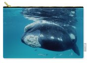 Southern Right Whale Australia Carry-all Pouch