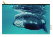 Southern Right Whale Eubalaena Carry-all Pouch