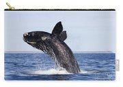 Southern Right Whale Carry-all Pouch
