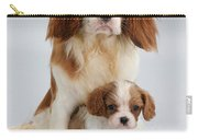 Spaniels Carry-all Pouch by Jane Burton