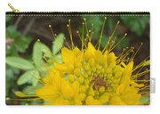 Yellow Bee Plant Sparks Carry-all Pouch