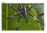 Spider Weevil Papua New Guinea Carry-all Pouch