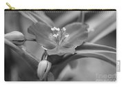 Spiderwort In Black Carry-all Pouch