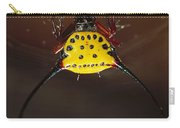 Spiked Spider Gasteracantha Sp In Web Carry-all Pouch