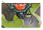 Spinybacked Orbweaver Spider Solomon Carry-all Pouch