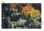 Splashes Of Fall Carry-all Pouch