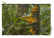 Splendid Leaf Frog  Costa Rica Carry-all Pouch