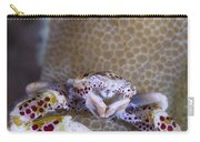 Spotted Porcelain Crab Feeding Carry-all Pouch by Steve Jones