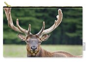 Spring Antlers Carry-all Pouch