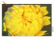Spring Chick Carry-all Pouch