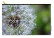 Spring Dandelion Carry-all Pouch