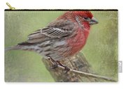Spring Finch Carry-all Pouch