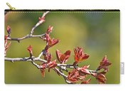 Spring Leaves Greeting Card Blank Carry-all Pouch