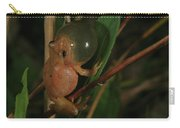 Spring Peeper Carry-all Pouch by Bruce J Robinson