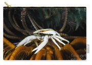 Squat Lobster Carrying Eggs, Indonesia Carry-all Pouch