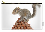 Squirrel And Nut Pyramid Carry-all Pouch by Mark Taylor