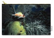 Squirrel Fish Carry-all Pouch